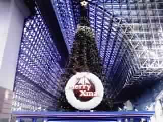 大階段のツリー